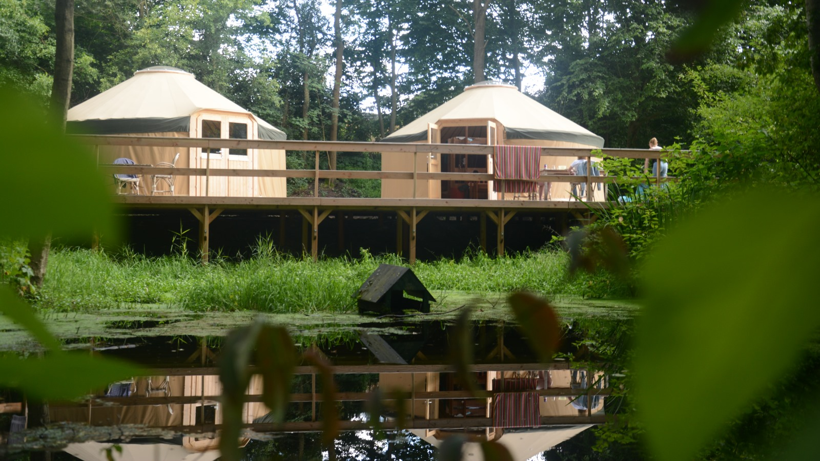 Yurts - tucked away at the source pond